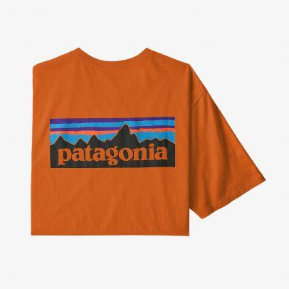 Patagonia Men's P-6 Logo Organic Cotton T-Shirt - DESO